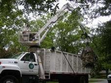 Trimming Branches with a Cherry Picker