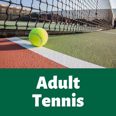 Adult Tennis (1) Opens in new window