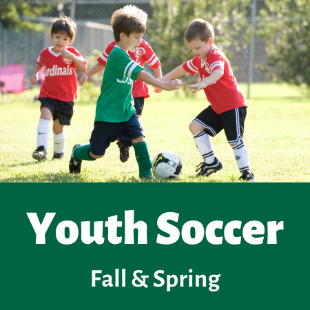 Youth Soccer Opens in new window